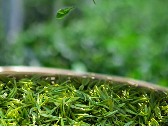 胃寒的人少喝绿茶,老人更适宜红茶,虚寒体?#36866;?#36873;黑茶
